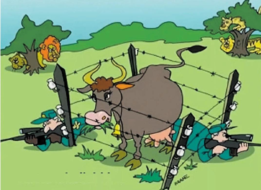 коровы картинки карикатуры картинки просто очень